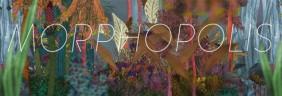 Morph 3